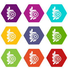 Intestine virus icons set 9 vector