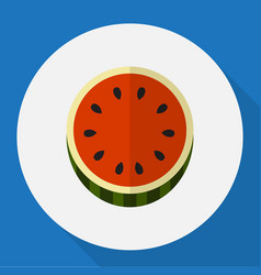 of berry symbol on watermelon vector image