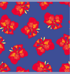 red canna lily on navy blue background vector image