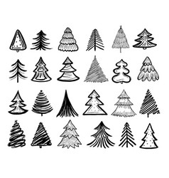 sketch fir tree christmas trees scribble pen vector image