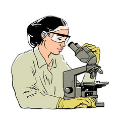 sketch of woman scientist looking through vector image
