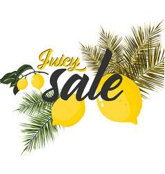 watercolor fresh lemon palm citrus fruits vector image