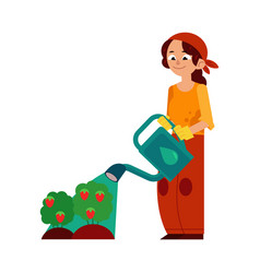 Young woman farmer pouring strawberries bushes vector