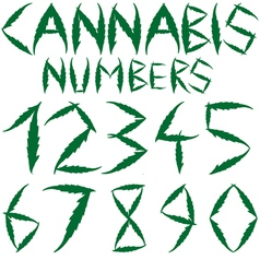 cannabis numbers vector image