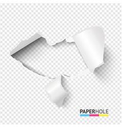 Emptyl tear edge paper hole banner on transparent vector