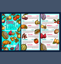 Exotic fruits market sketch menu price vector