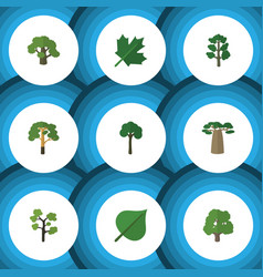 Flat icon natural set of wood evergreen garden vector