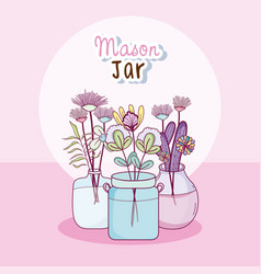 mason jar with flowers vector image