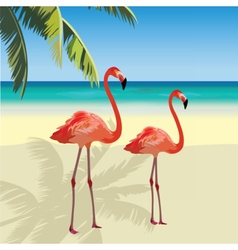 Two flamingo birds at Tropic Beach vector