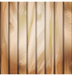 Wall panels with wood detailed texture vector image