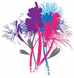 flowers like fireworks vector image