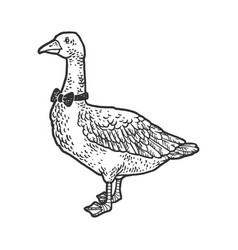 goose in a bow tie sketch vector image