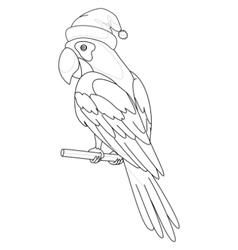 parrot santa claus contours vector image