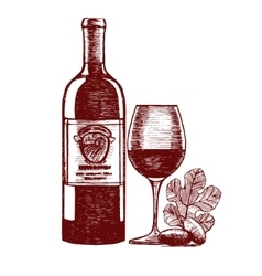Wine Hand Draw Sketch vector