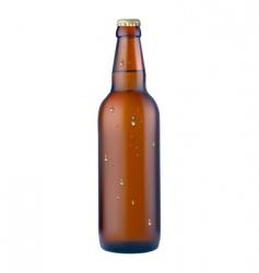 bottle of beer vector image vector image