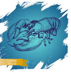 Sketch - lobster hand drawn vector