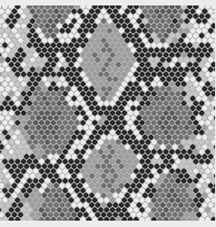 Snake skin texture with imitation of python skin vector
