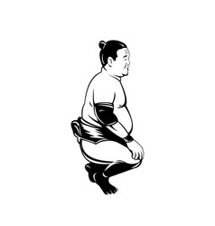 Sumo wrestler or rikishi squatting side view vector