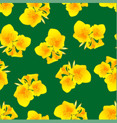yellow canna lily on green background vector image