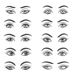 beautiful female eyes set vector image