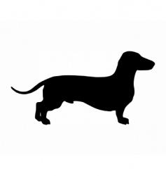 Short legged badger dog vector