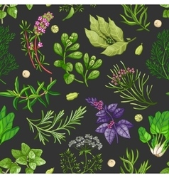 green pattern with herbs on dark vector image