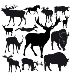 hoofed animals vector image