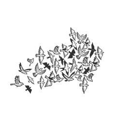 birds flying in form of arrow engraving vector image