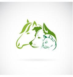 mammal group design on white background horse vector image