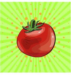 tomato vegetable pop art food eco vector image