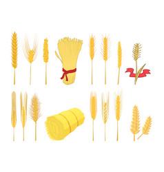 wheat icon set cartoon style vector image