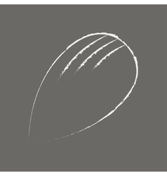 Almond hand drawn in chalk on a blackboard on grey vector image