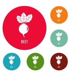 beet icons circle set vector image