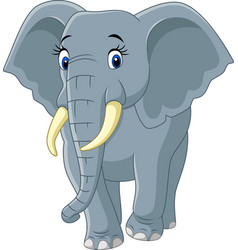 Cartoon funny elephant on white background vector