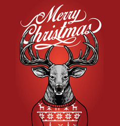 Christmas deer wearing christmas sweater vector