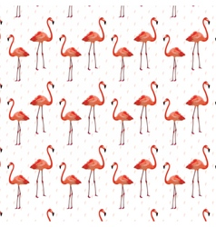 Flamingo birds pattern vector