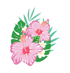 hibiscus print isolated on white vector image