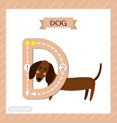 Letter d uppercase tracing standing dog vector