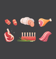 set fresh meat products steak in cartoon style vector image
