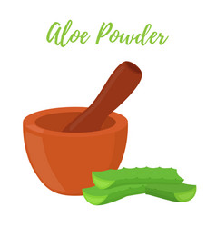 Aloe vera with pestle mortarcartoon style vector