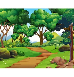 Nature scene with hiking track and trees vector