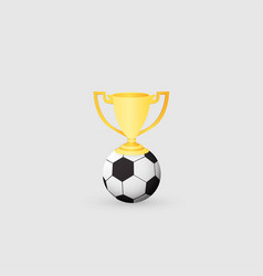 soccer ball and cup winner vector image