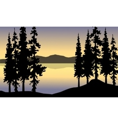 Spruce in riverbank scenery vector