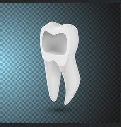 tooth icon realistic teeth isolated on vector image