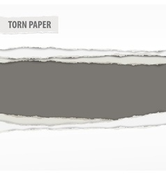 Torn paper pieces on grey vector image