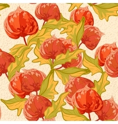 Vintage wallpaper seamless pattern with cape vector image
