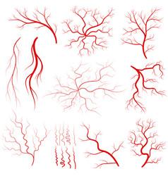 Vein set human vessel eye veins vector