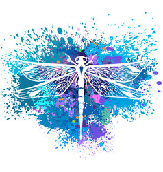 Dragonfly on background of paint splashes vector