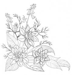 flowers contours vector image
