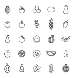fruit line icons on white background vector image